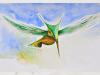 colibrimarciano